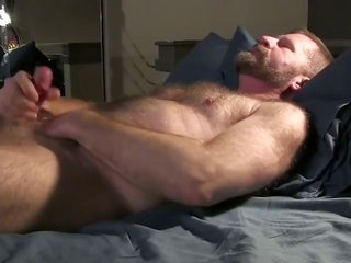 Bear squeezes his schlong