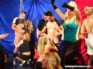 suggestive kickback damsels engulf dicks in club orgy